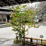 0704_Japon