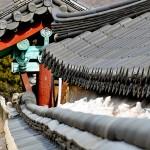 1151_Coree