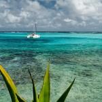 Grenadines_12