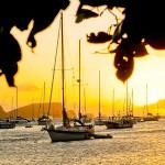 Grenadines_14